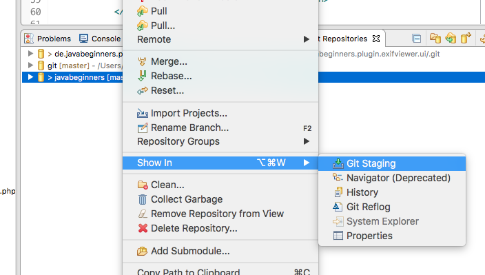 Git Repository View